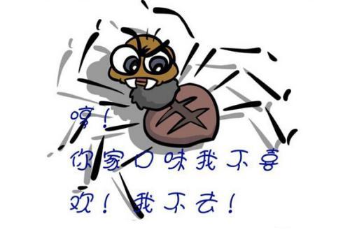 冬镜谈谈如何吸引蜘蛛来抓取网站页面